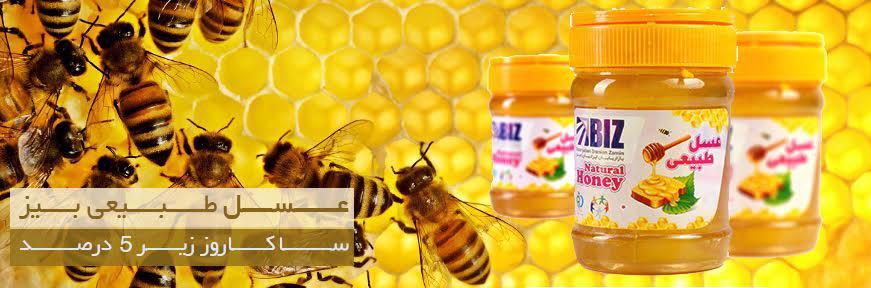 عسل طبیعی دکتر بیز اریگانوم